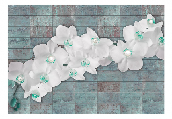 Fototapet - Orchids with pearls 3