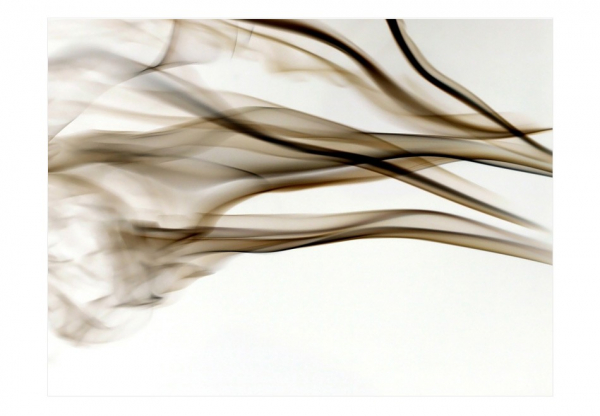 Fototapet - smoke - abstract 3