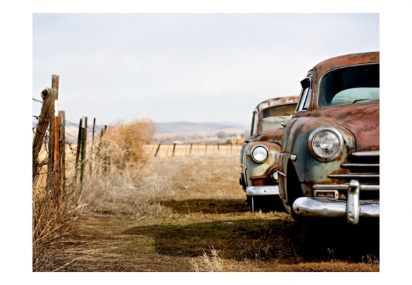 Fototapet - Two old, American cars 3