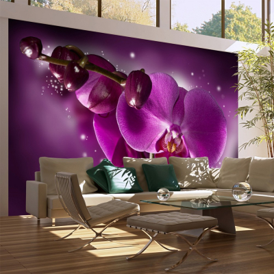 Fototapet - Fairy tale and orchid0