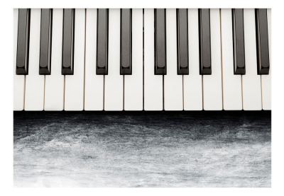 Fototapet - Inspired by Chopin - grey stone [3]
