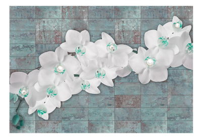 Fototapet - Orchids with pearls3