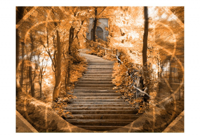 Fototapet - Stairs to paradise [3]