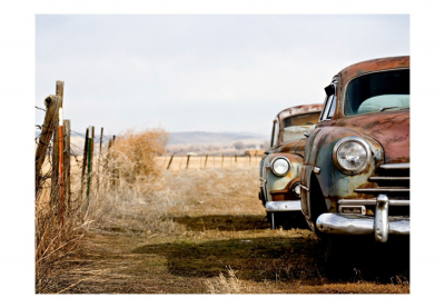 Fototapet - Two old, American cars3