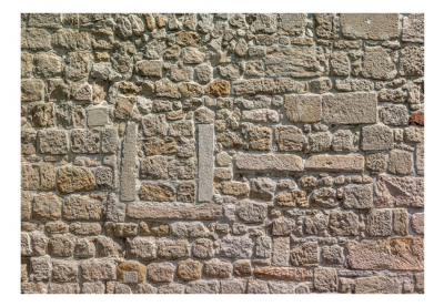 Fototapet - Wall From Stones3
