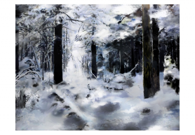 Fototapet - Winter forest3
