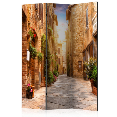 Paravan - Colourful Street in Tuscany [Room Dividers] [0]