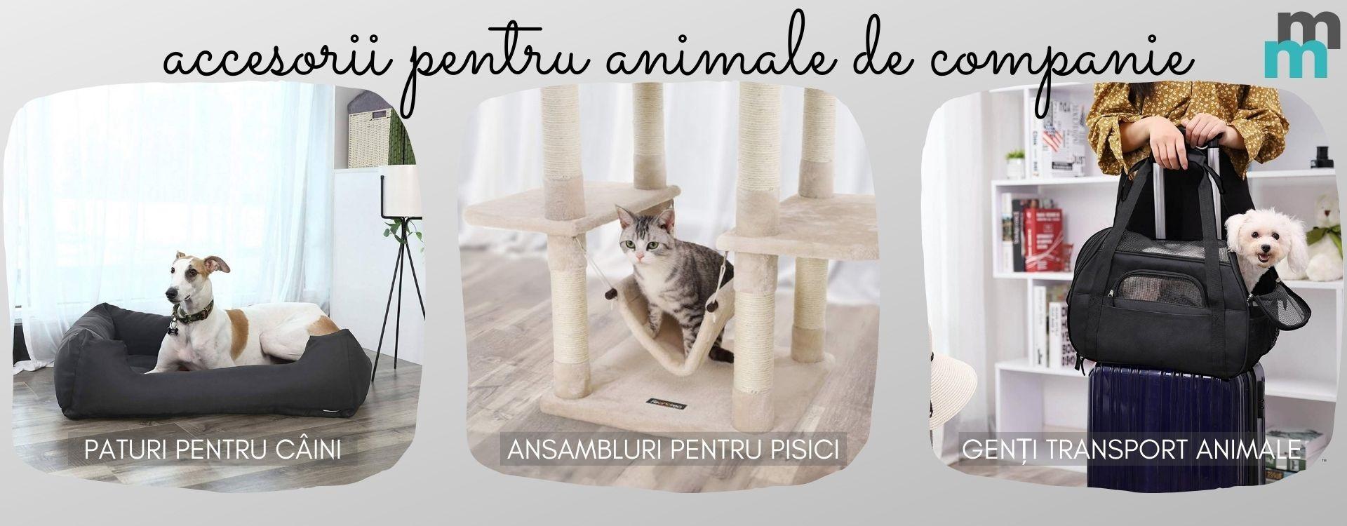 Accesorii pentru animale