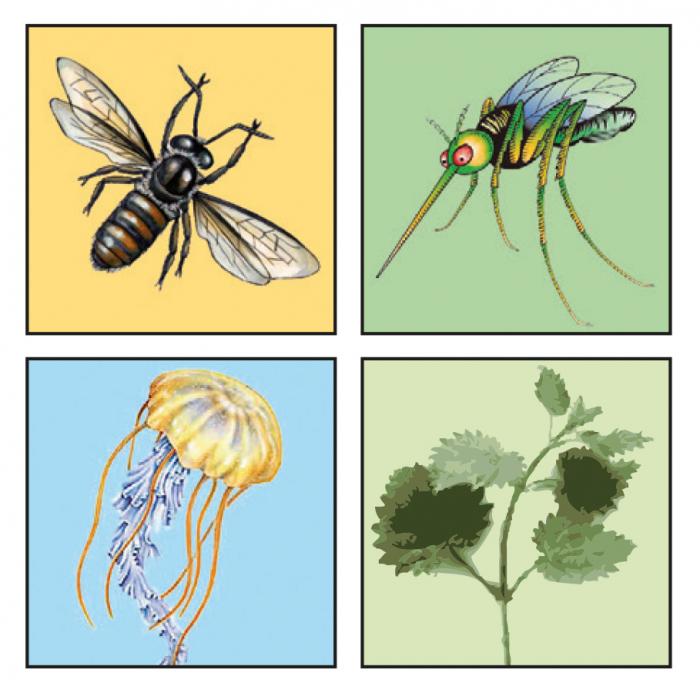 Lotiune calmare intepaturi insecte Travelsafe TS93, 14ml [2]