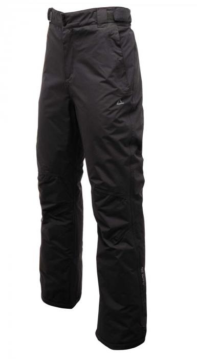 Pantaloni Dare 2b Divedown 0