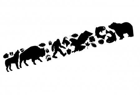 Petece reparatii textil Gear Aid Wildlife 91122 [0]