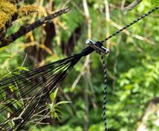 Set prindere hamac Amazonas Microrope [2]