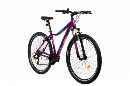 Bicicleta MTB DHS Terrana 29 [1]