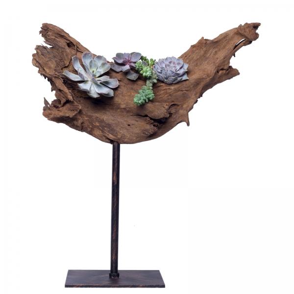 Decoratiune-interior-lemn-de-mangrova-plante-suculente-fier-patina-bronz-2 1