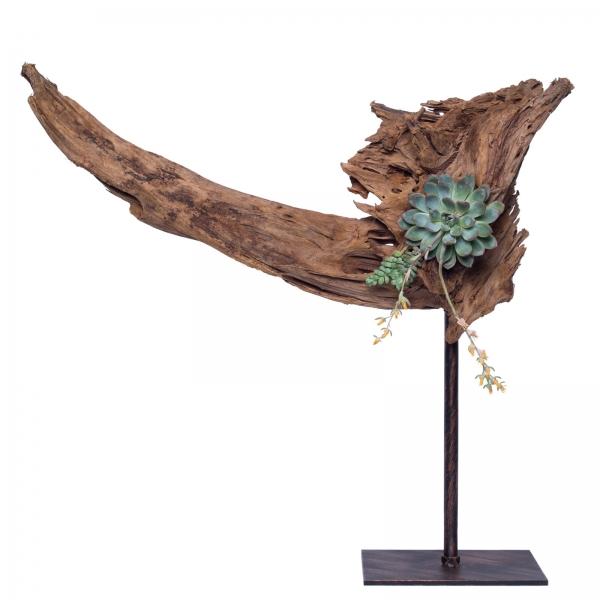 Decoratiune-interior-lemn-de-mangrova-plante-suculente-fier-patina-bronz-3 1