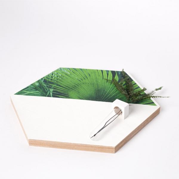 hexagon-alb-lemn-cu-plante-stabilizate 3