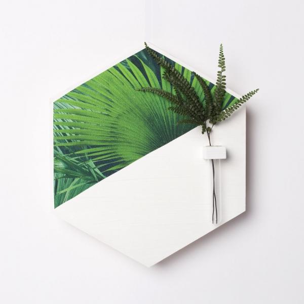 hexagon-alb-lemn-cu-plante-stabilizate 0