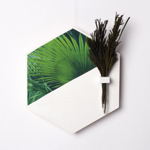 hexagon-alb-lemn-cu-plante-stabilizate 1