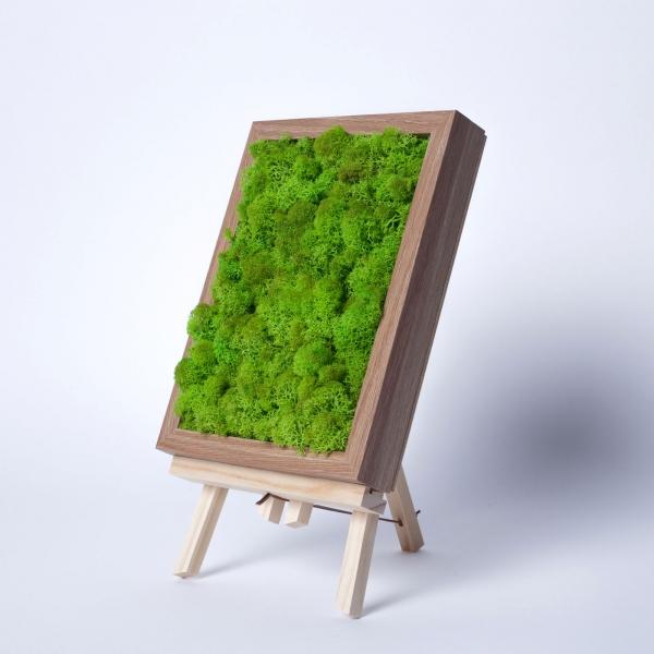rama-lemn-stejar-18x24-licheni-stabilizati-conservati 0