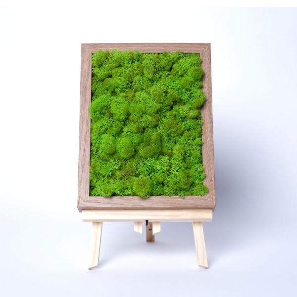 rama-lemn-stejar-18x24-licheni-stabilizati-conservati 2