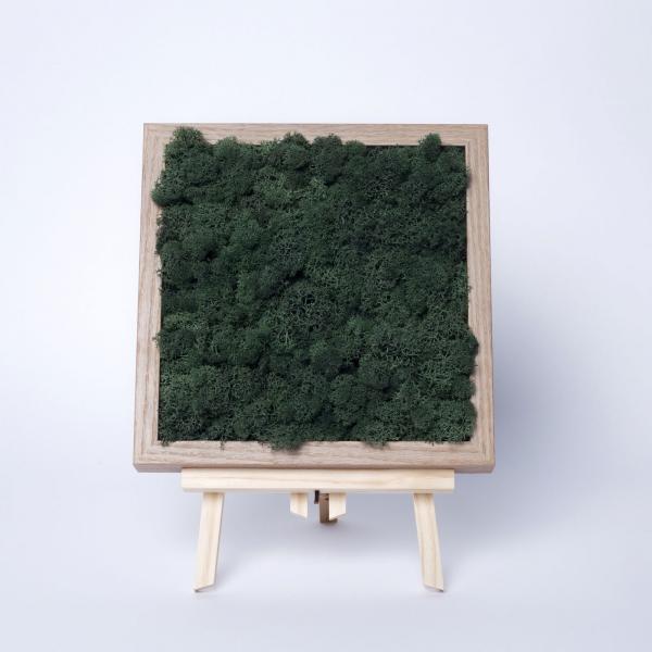 rama-lemn-stejar-23x23-licheni-stabilizati-conservati 2
