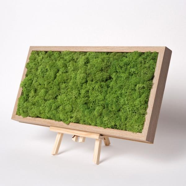 rama-lemn-stejar-23x50-licheni-stabilizati-conservati 0