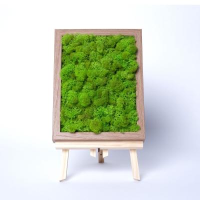 Rama Licheni 18 x 24 Verde Spring2