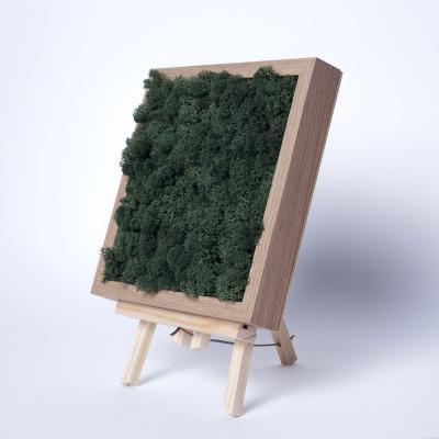 Rama Licheni 23 x 23 Verde Dark0