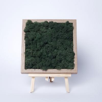 Rama Licheni 23 x 23 Verde Dark2