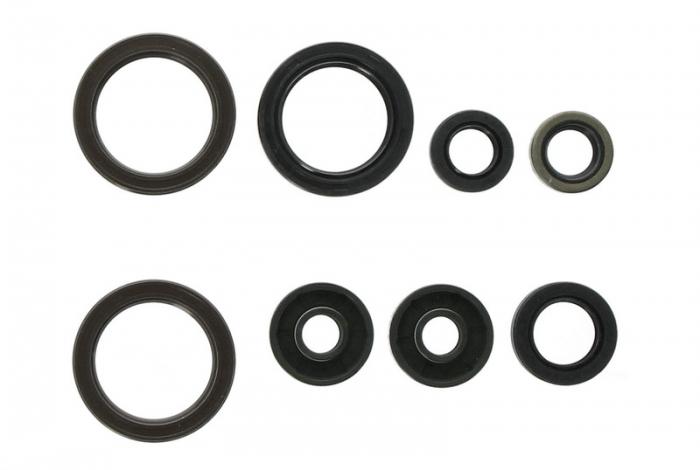 Set garnituri motor KTM EXC 450 12-13, SX-F 450 dupa 2013 [0]