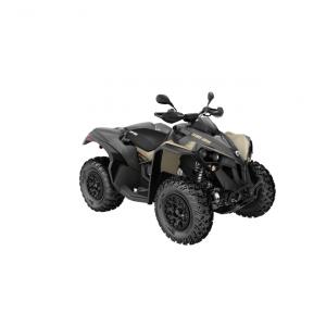 Renegade XXC 650T 20210