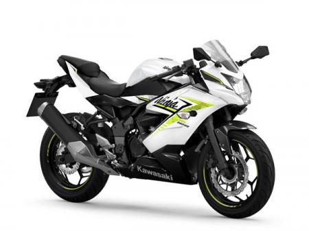 Kawasaki Ninja 125 ABS GN1/WT1  2022