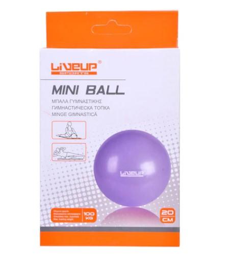 Minge fitness- Mini, Violet, 20 cm 1