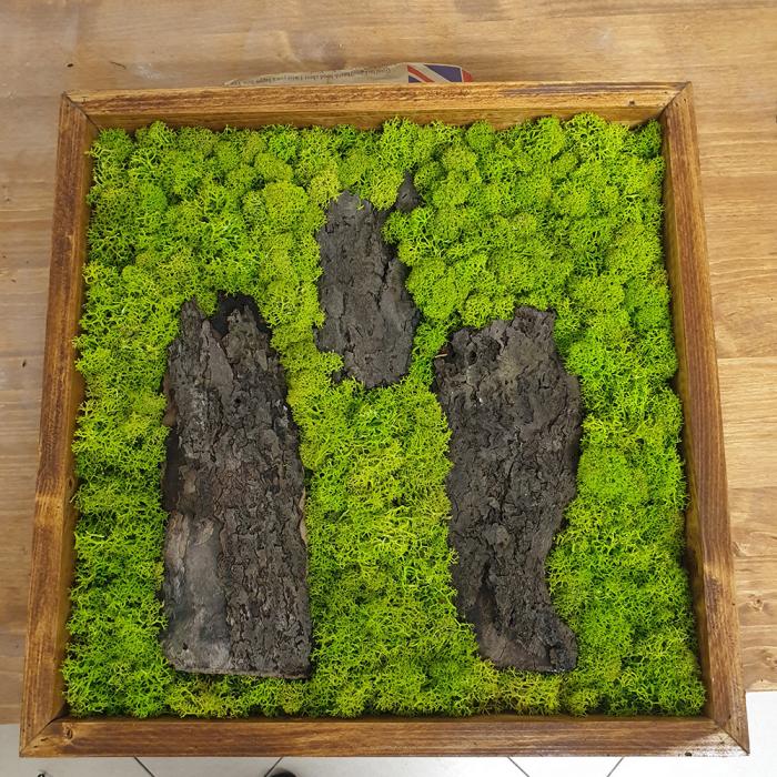 Tablou de Perete Forest din Licheni si Lemn 0