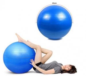 Minge fitness 65 cm, albastra [2]