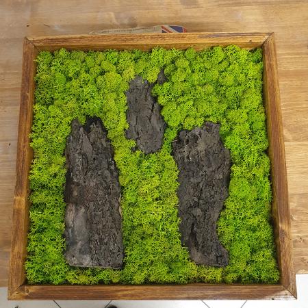 Tablou de Perete Forest din Licheni si Lemn
