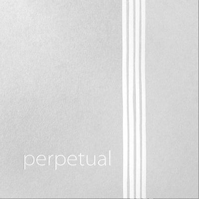 Perpetual Cadenza