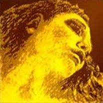 Coarda E Pirastro Evah Pirazzi Gold vioara 0