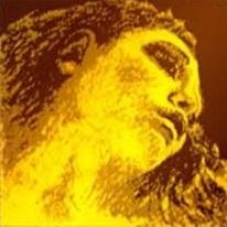 Coarda G Evah Pirazzi Gold vioara, argint 0
