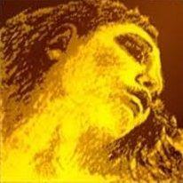 Set corzi Evah Pirazzi Gold vioara, G argint [0]