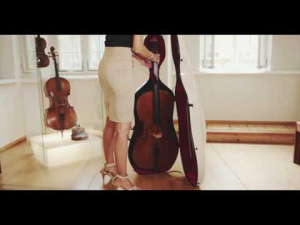Cutie Gewa Air violoncel [1]