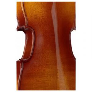Set Stagg vioara acustica2