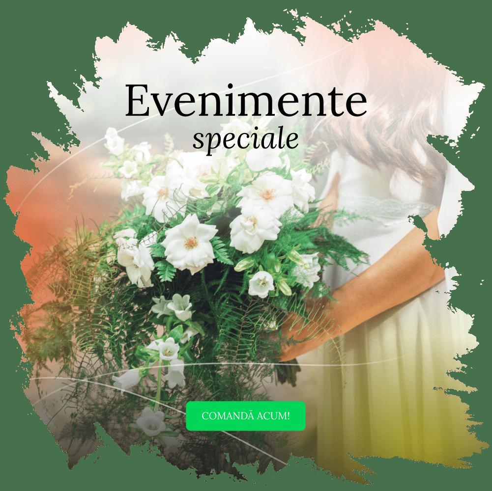Evenimente speciale