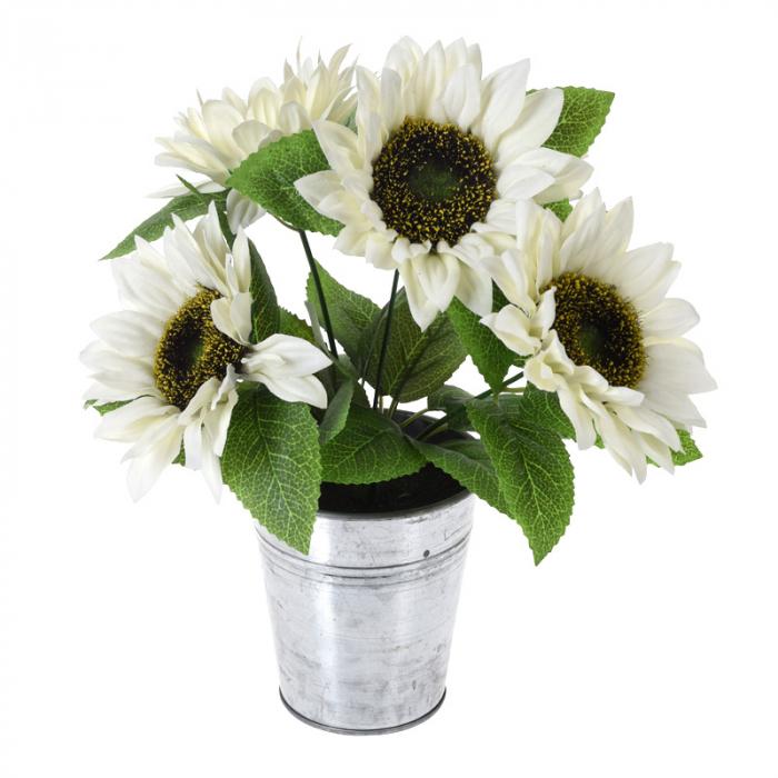 Floarea Soarelui, Alba in ghiveci de metal, H 27 cm 0
