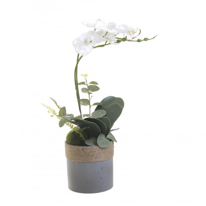 Orhidee alba in ghiveci 45 cm 0