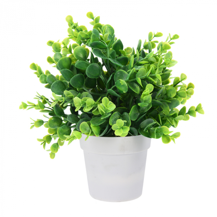 Planta artificiala decorativa cu frunza rotunjita, H 24 cm, in ghiveci plastic alb, 8.5x9cm 0