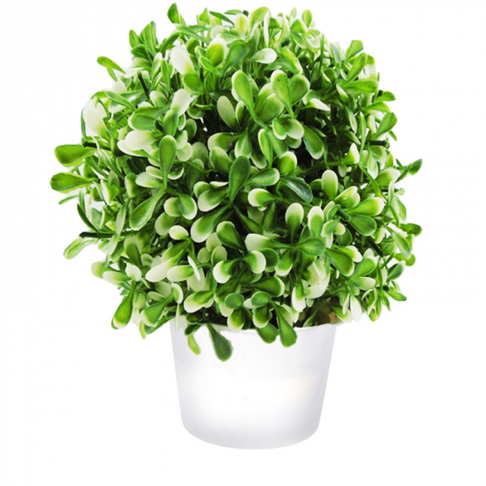 Planta artificiala verde cu alb in ghiveci alb, 20 cm 1