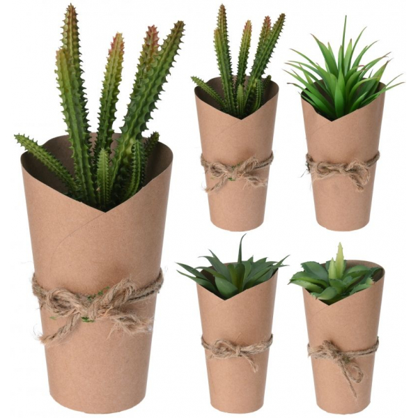 Planta artificiala, Cactus in ghiveci ambalat in carton, 20 cm 1