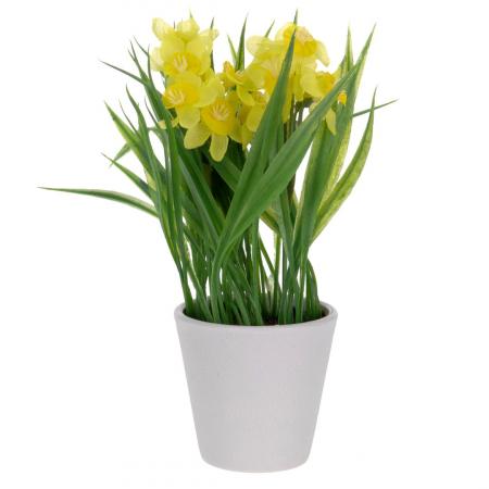 Narcise artificiale, in ghiveci, Galbene, 22 cm [1]