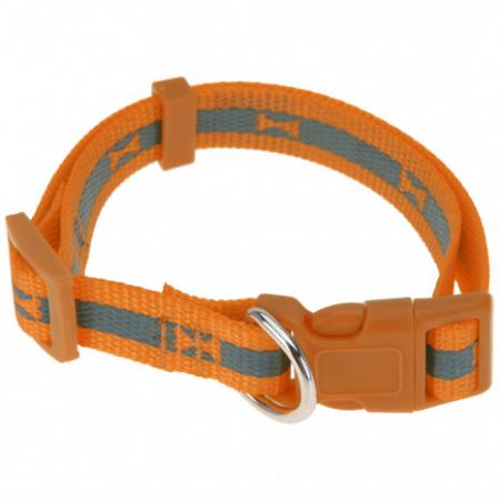 Zgarda pentru catei portocaliu fosforescent 30-50 X 2 cm3